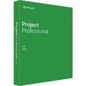 microsoft office professional 2019 features